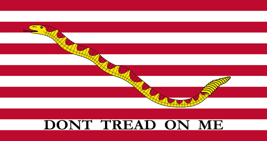 Navy Digital Art - First Navy Jack by War Is Hell Store