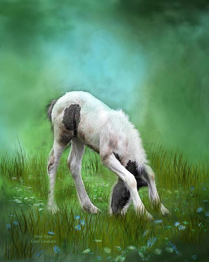 Foal Mixed Media - First Taste by Carol Cavalaris
