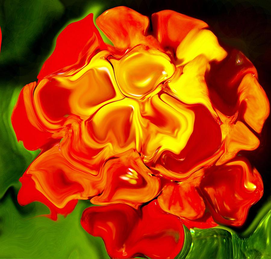Flower Photograph - Flora Rebare Bella by Robert OP Parrish