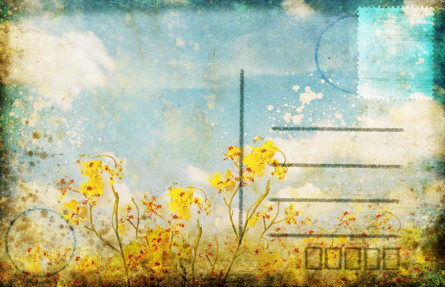 Address Photograph - Floral In Blue Sky Postcard by Setsiri Silapasuwanchai
