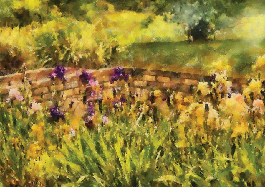 Savad Photograph - Flower - Iris - By The Bridge by Mike Savad