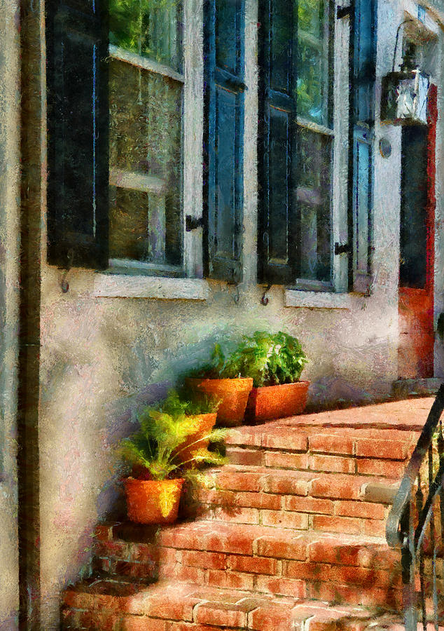 Suburbanscenes Photograph - Flower - Plants - The Stoop  by Mike Savad