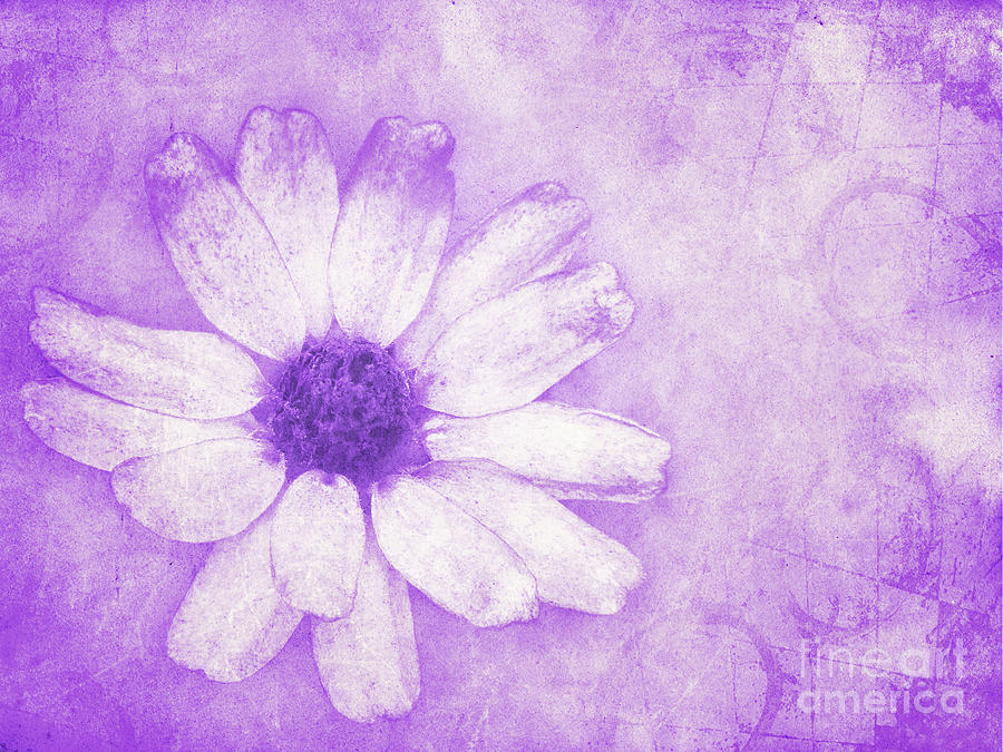 Flower Photograph - Flower Art II by Angela Doelling AD DESIGN Photo and PhotoArt