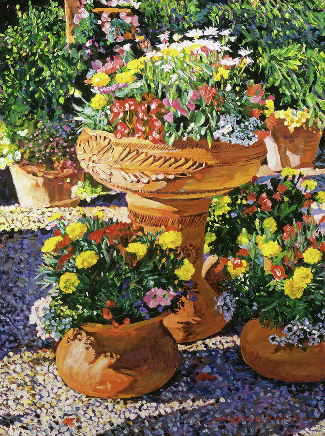 Nature Painting - Flower Pots In Sunlight by David Lloyd Glover