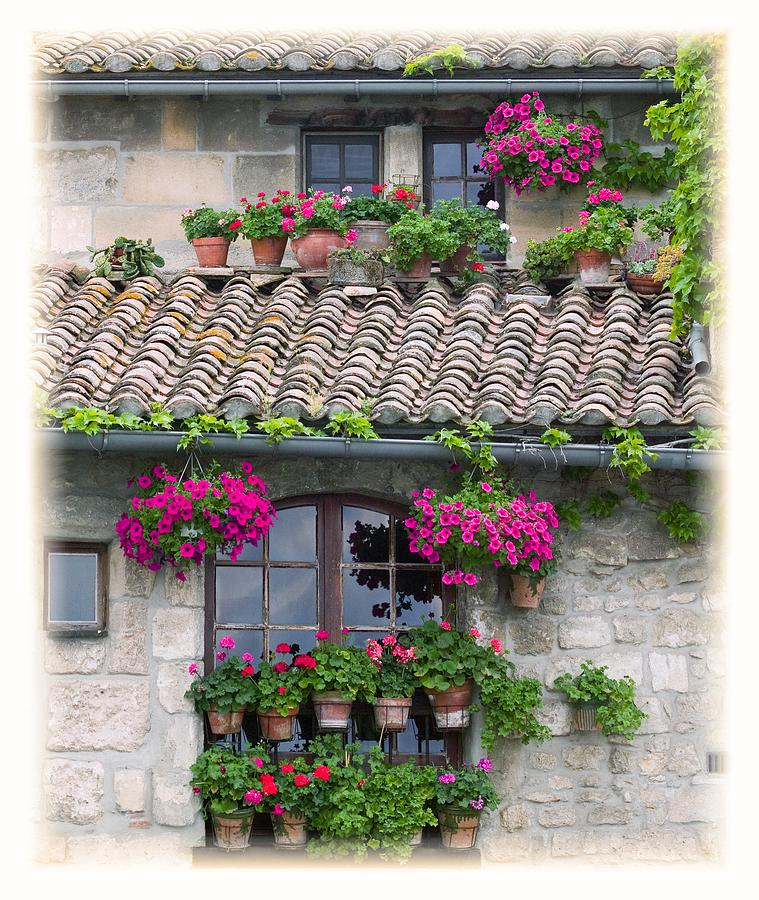Arches Photograph - Flower Pots In Windows In Arles by Carson Ganci