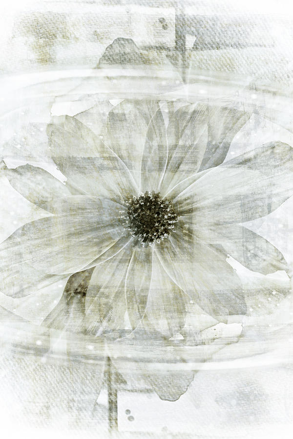 Flower Reflection Floral Garden Water Gardens Zen Painting Paintings Botanical Still Life Gardening Flowers Design Graphic Graphical Designs Contemporary Modern Art Abstract Florals Flowering Spring Summer Psychedelic Psychedelia Dreamy Dream Pretty Beautiful Black And White Abstracts Green Nature Organic Vintage Retro Style Antique Lotus Asian Asia Japanese Chinese Moody Mood Moods Botany Botanic Rain Rainy Day Deco Decor Decorative Light Texture Textured Monochrome Sepia Bright Pale Pond Lake Painting - Flower Reflection by Frank Tschakert