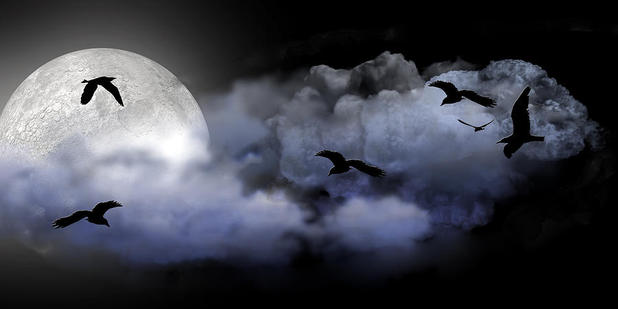 Moon Digital Art Digital Art - Fly By Night by Evelyn Patrick