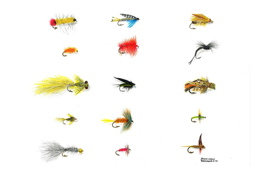 Fly Fishing Drawing - Fly Fishing Nymphs Wet And Dry Flies by Sharon Blanchard