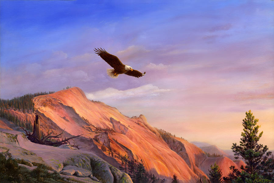 Flying American Bald Eagle Mountain Landscape Painting