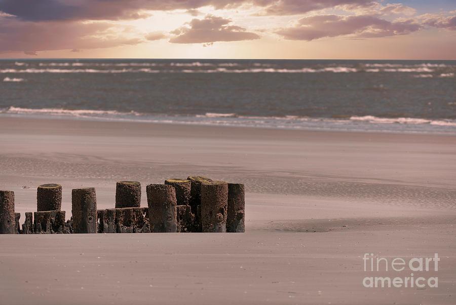 Folly Beach Sunrise Photograph