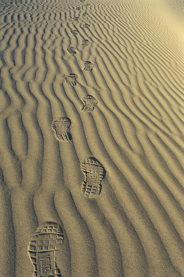 Footprints Photograph - Footprints In The Sand by Joe  Palermo