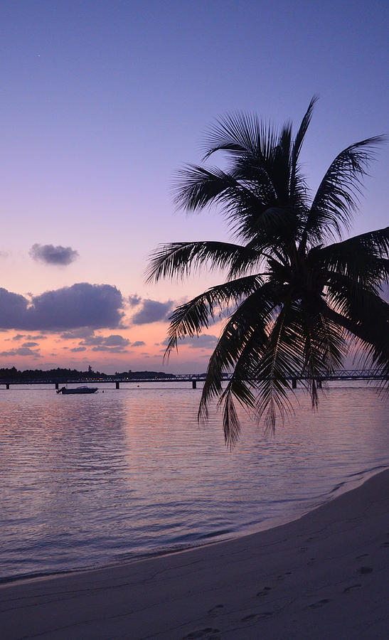Tropical Sunset Photograph - Footsteps by Corinne Rhode