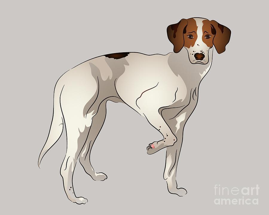 Foxhound Digital Art - Foxhound by MM Anderson