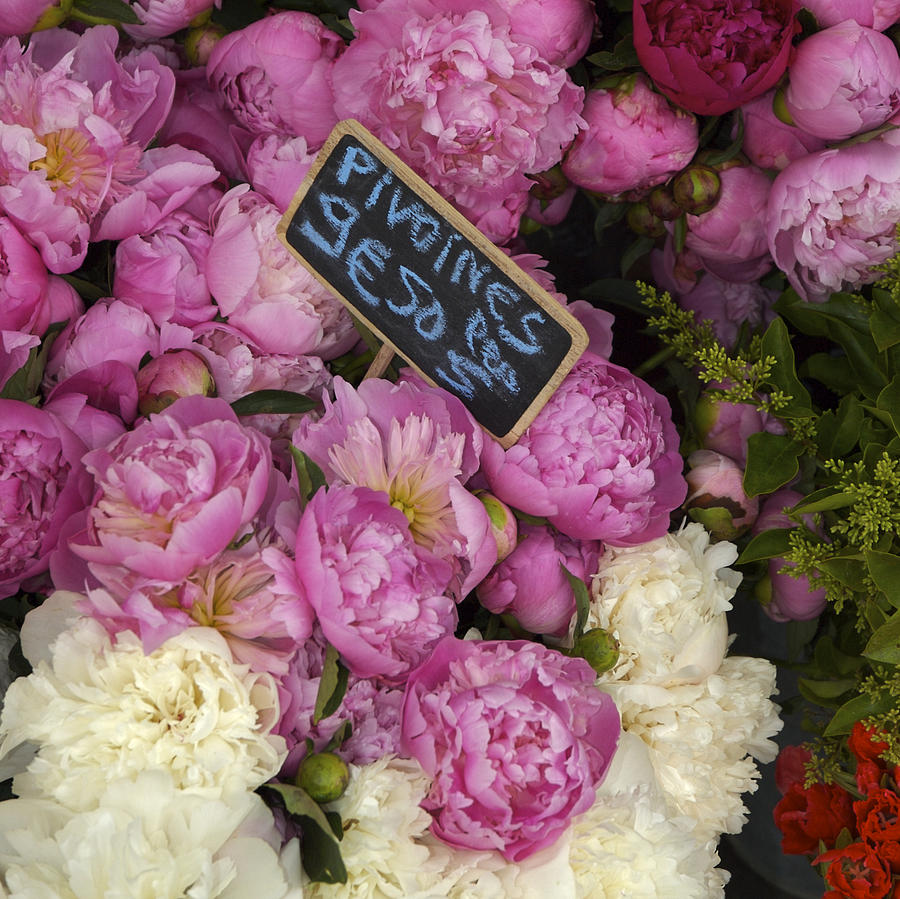 Abundance Photograph - France, Paris Peonies Flowers by Keenpress