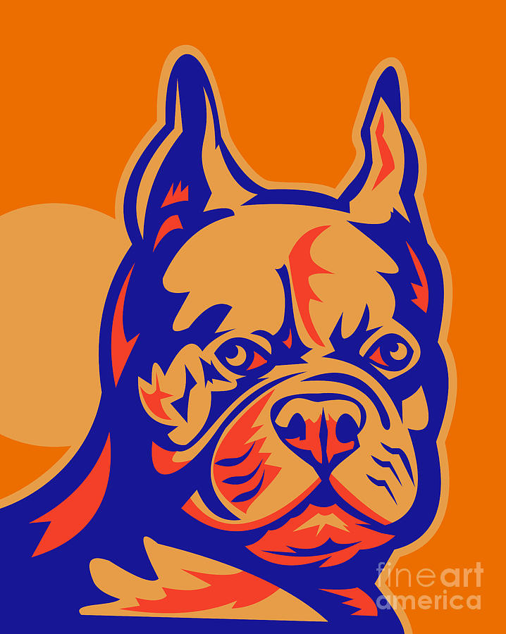 French Bulldog Head Portrait Retro Digital Art