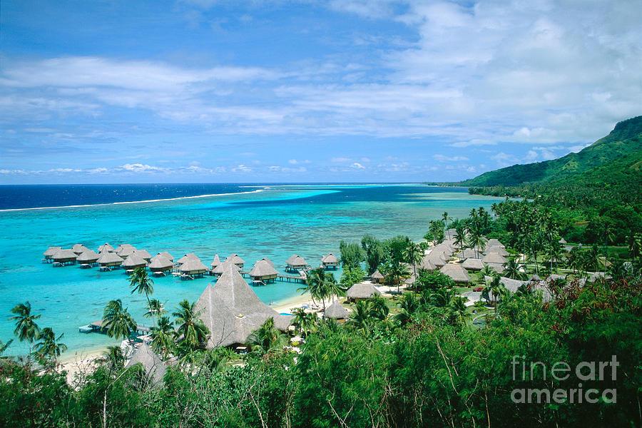 French Polynesia, Moorea Photograph