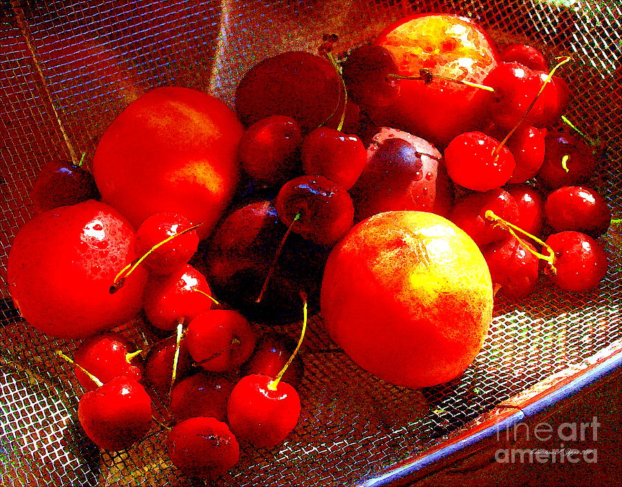 Fresh Stone Fruit Still Life - A Summer Paintograph Photograph