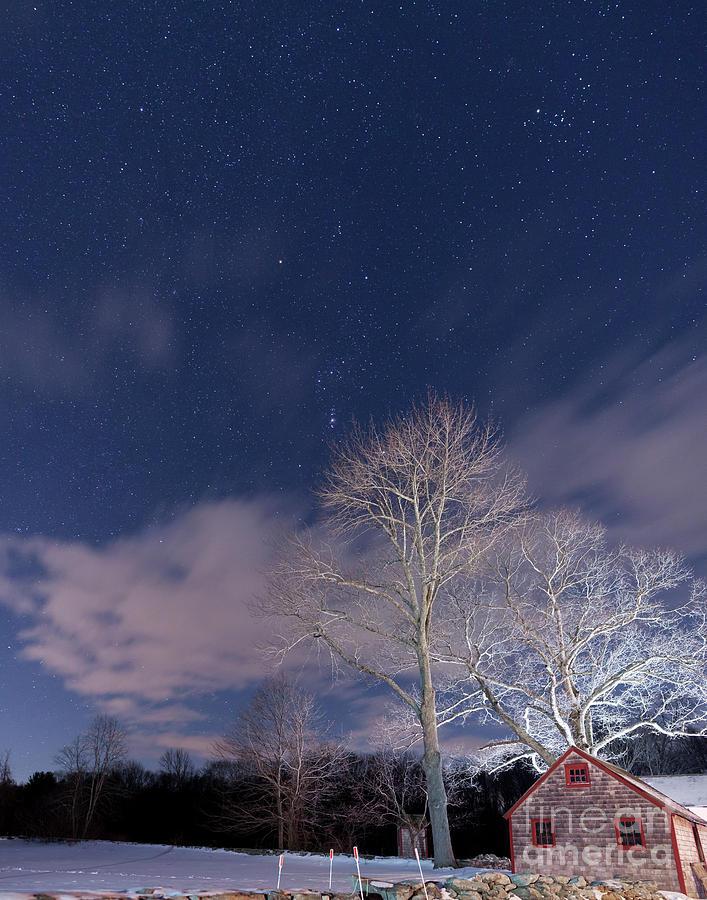Frozen Night Photograph
