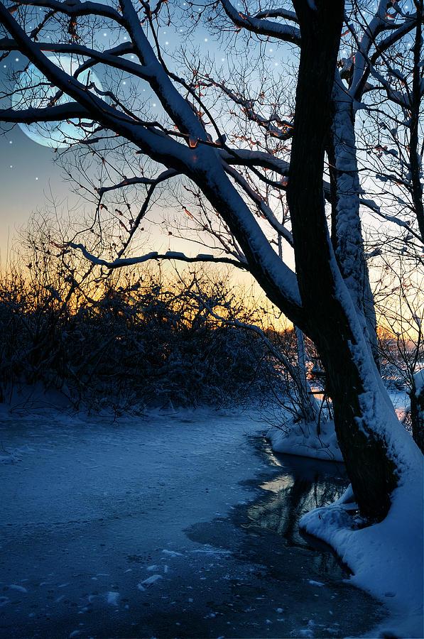 Frozen River Photograph