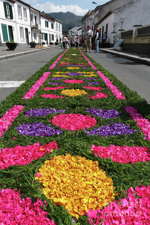Flower Carpet Photograph - Furnas - Azores Islands by Gaspar Avila