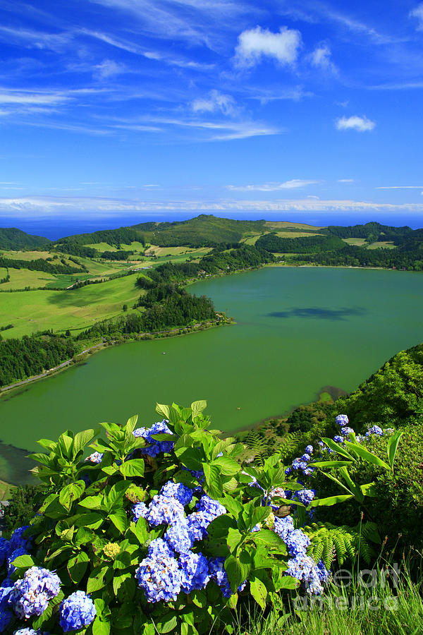 Azores Photograph - Furnas Lake by Gaspar Avila