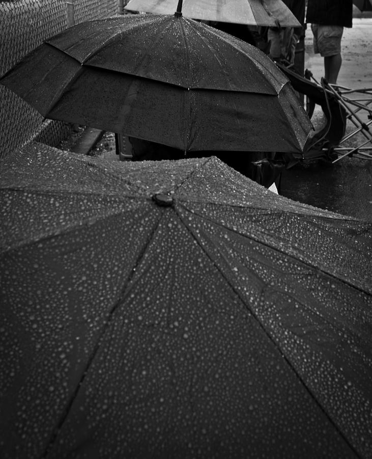 Umbrella Photograph - Game Watchers 1 by Dale Stillman