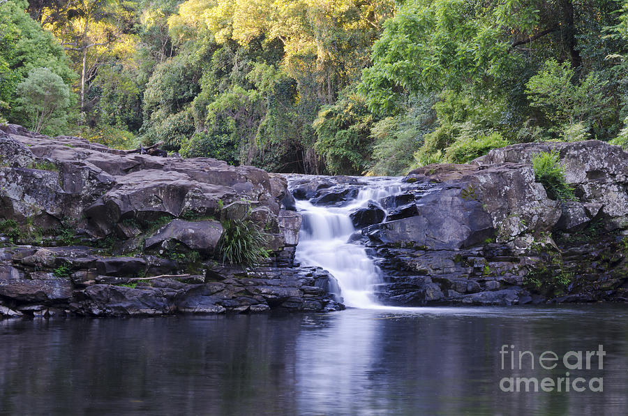 Gardner 39 S Falls Waterfall And Rock Pool Photograph By
