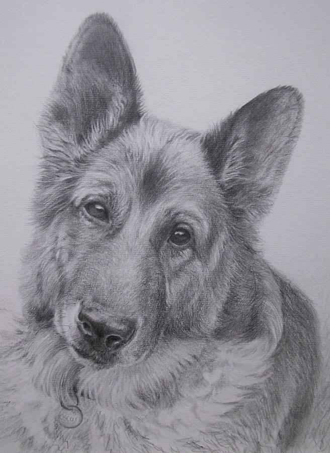 Gsd Painting - German Shepherd by Keran Sunaski Gilmore