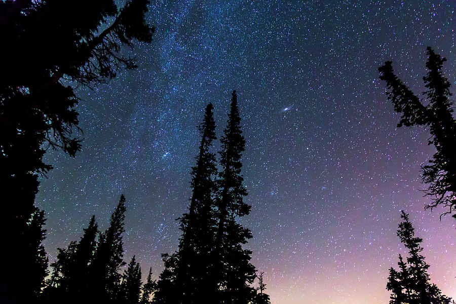 Getting Lost In A Night Sky Photograph