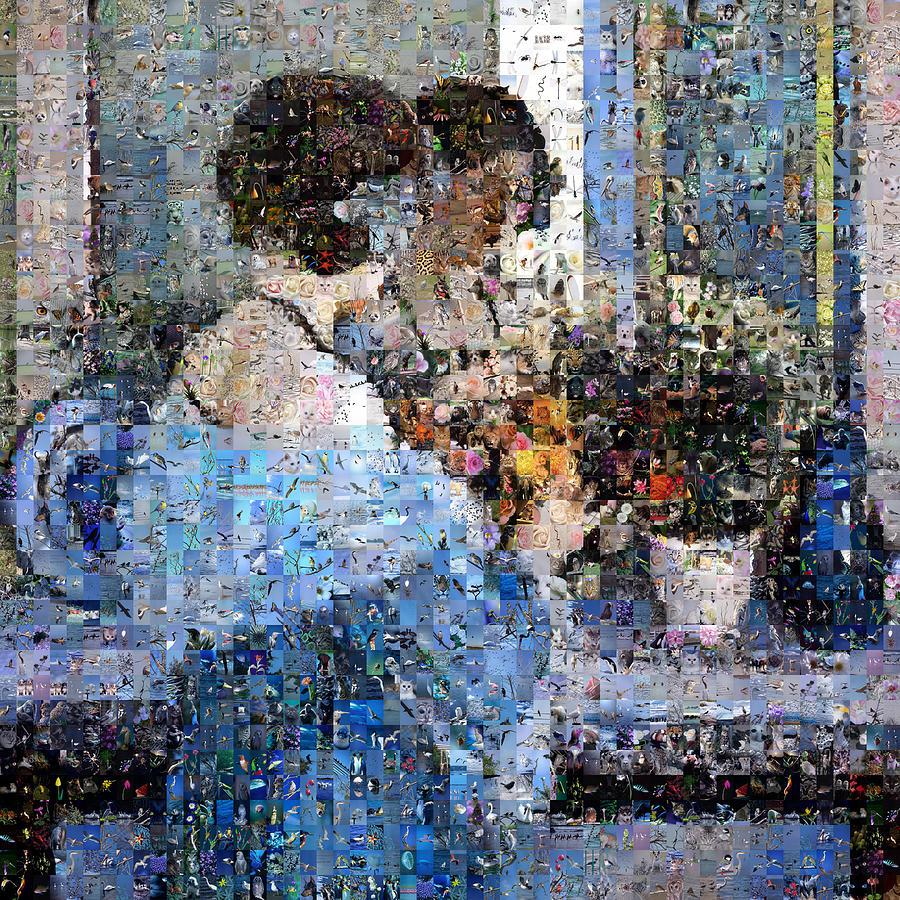 Mosaic Digital Art - Girl In Blue Arranging Flowers by Gilberto Viciedo