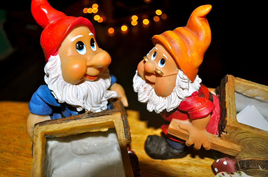 Statues Photograph - Gnome Friends by Brynn Ditsche