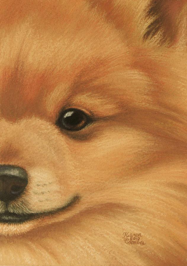 Dog Pastel - Goggie Pomeranian by Karen Coombes