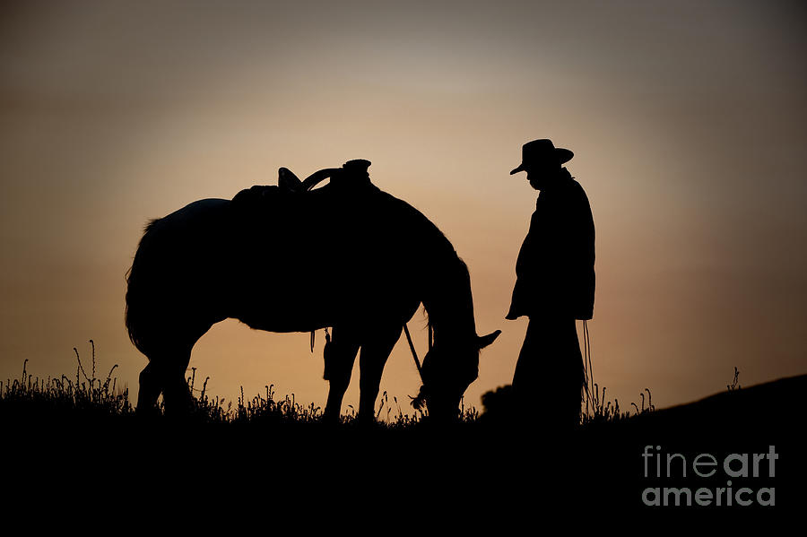 Cowboy And Horse Photograph - Going Home by Sandra Bronstein