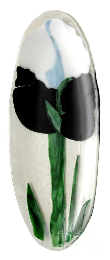 Art Glass Glass Art - Gok Black And White Lily by Sandy Feder