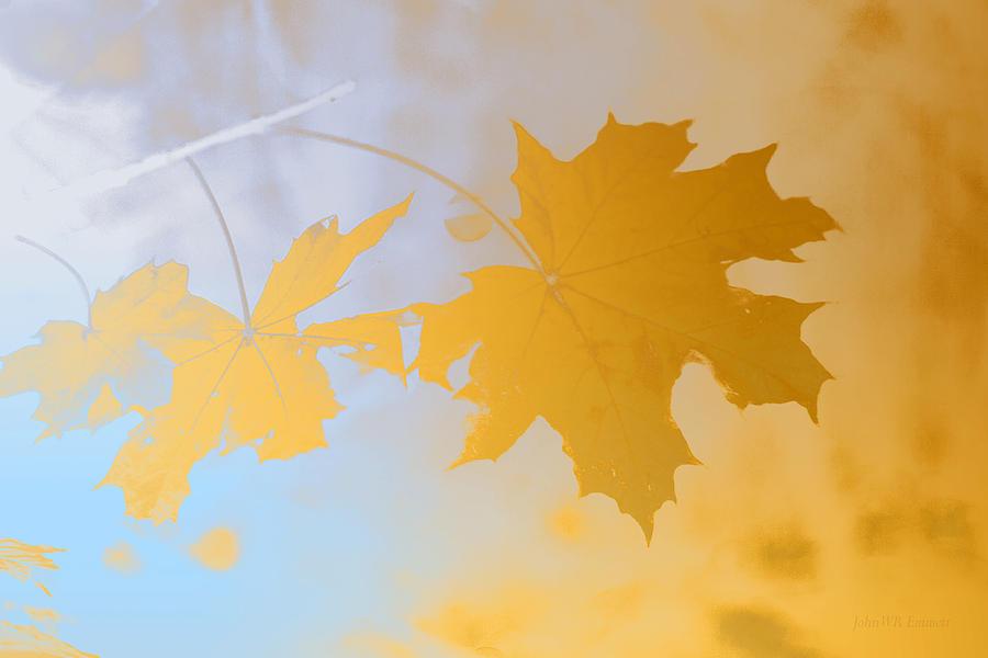 Gold Leaf II Painting