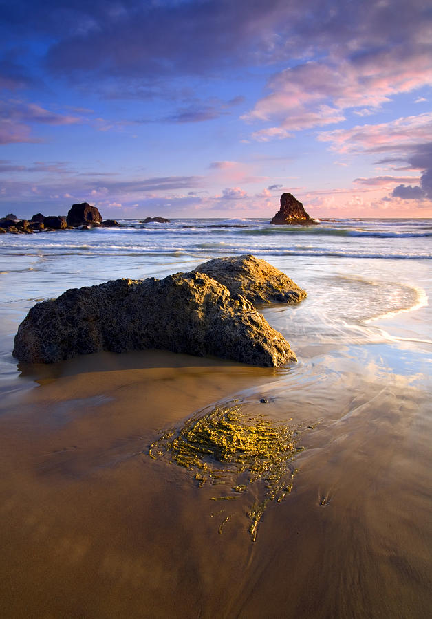 Golden Coast Photograph