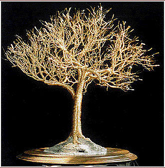 Golden Elm - Wire Tree Sculpture Sculpture