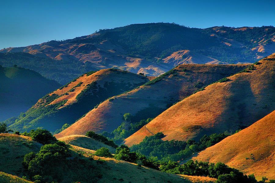 Hills Prints Photograph - Golden Hills by Steven Ainsworth
