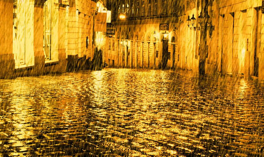 Golden Rain In Vienna At Night Photograph