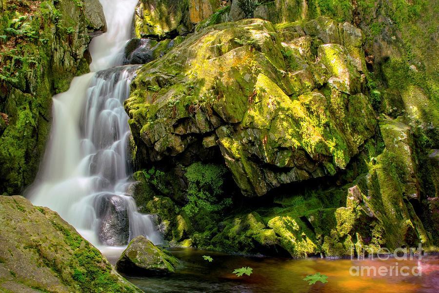 Goldmine Brook Falls Chester Ma Photograph