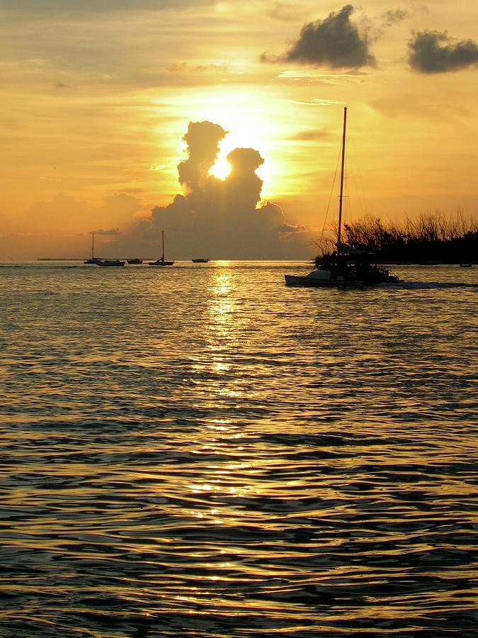 The Sunset In The Keys Photograph - Goodnight My Love by Jennifer  Lane