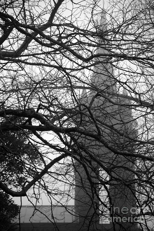 Furnas Photograph - Gothic by Gaspar Avila