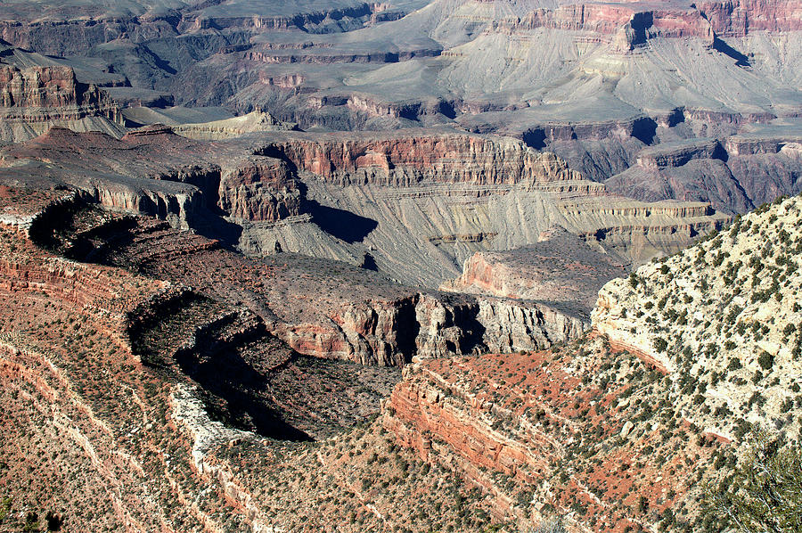 Grand Canyon Photograph - Grand Canyon Greatness by Paul Cannon