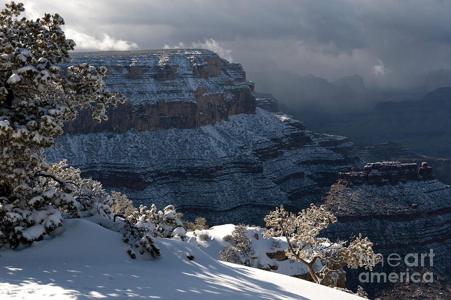 Grand Canyon Photograph - Grand Canyon Storm by Sandra Bronstein