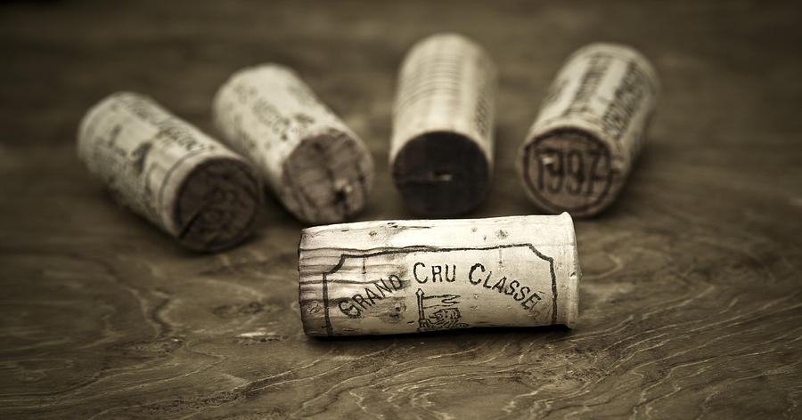 Wine Photograph - Grand Cru Classe by Frank Tschakert