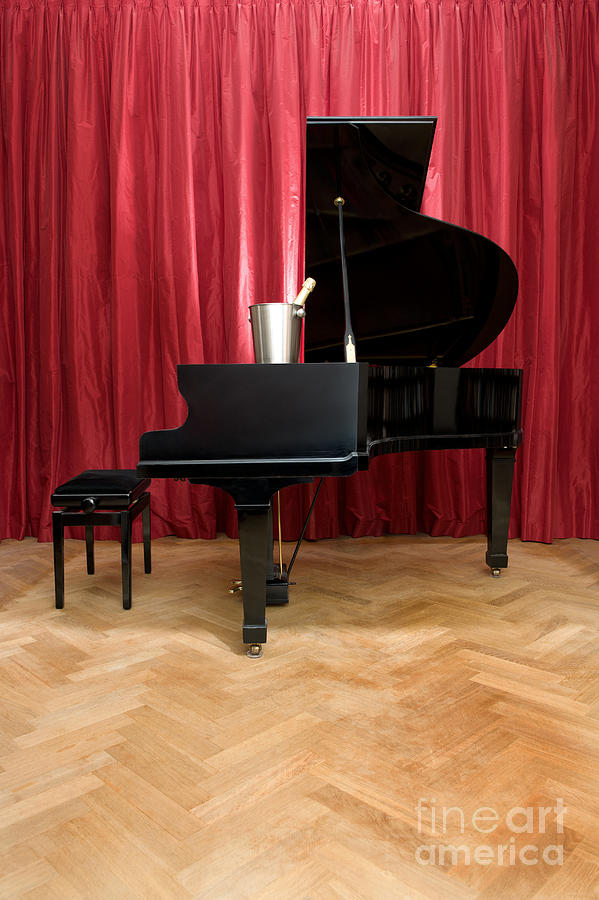 Grand Piano With A Champagne Cooler Photograph