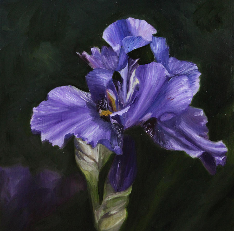 How To Paint Iris Flowers In Acrylic