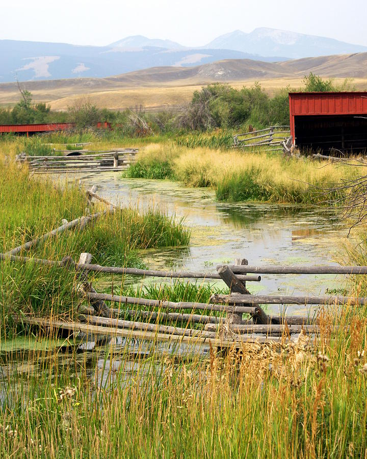 Ranch Photograph - Grants Khors Ranch Vertical by Marty Koch