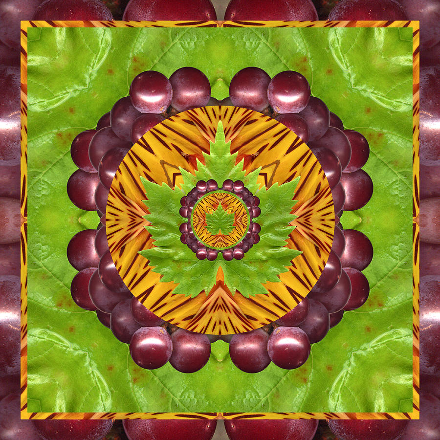 Yoga Art Photograph - Grape Domain by Bell And Todd