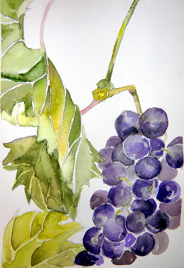 Fruit Painting - Grape Vine by Mindy Newman